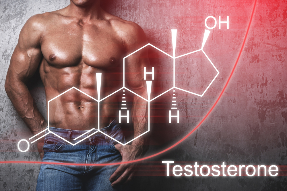 2021 Testosterone Booster Supplement Guide